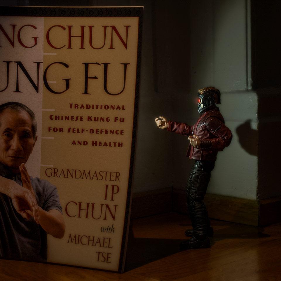 Wing Chun - Kung Fu.